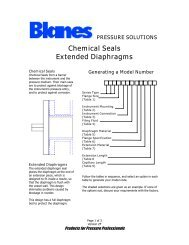Chemical Seals Extended Diaphragms - Blanes Pressure Solutions