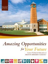 Amazing Opportunities For Your Future