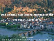 Energiekonzeption der Stadt Heidelberg