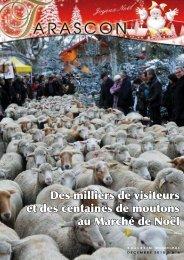 Des milliers de visiteurs et des centaines de moutons au ... - Tarascon