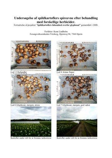 pdf-fil - Kartoffelafgiftsfonden