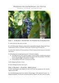 Gastronomi- og vin- tur - Barcelona Rejser - Page 2