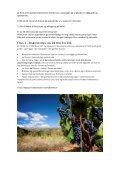 Gastronomi- og vin- tur - Barcelona Rejser - Page 3