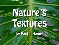 C - Paul J Hamel Official Website All Rights Reserved