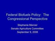 Stephanie Mercier - Bioeconomy Conference 2009