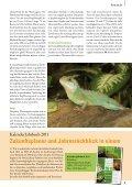 Ein Wasserdrache fürs Terrarium - Zooshop-Max - Page 5