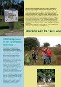 Veldspraak 2 2008 - Dwingelderveld - Page 4