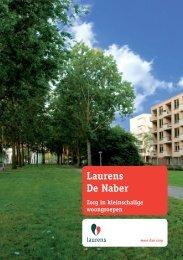 Waarom Laurens De Naber?