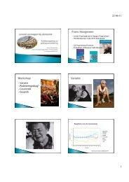 workshop lerend vermogen en gedragsproblemen - StudieArena