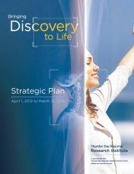 TBRRI Strategic Plan 2012-2016 - Thunder Bay Regional Research ...