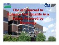 Use of Charcoal to Enhance Soil Quality in a Future Powered by ...