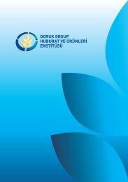 Pdf İndir - Doruk Group Holding