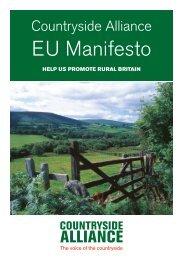 2014_-_EU_Manifesto