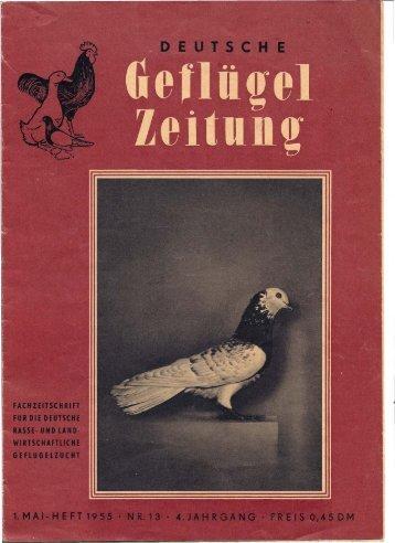 13 - SV der Danziger Hochflieger