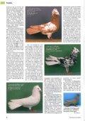23 - SV der Danziger Hochflieger - Page 4
