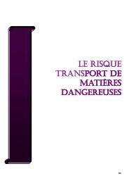 LE RISQUE TRANSPORT DE - Port la Nouvelle