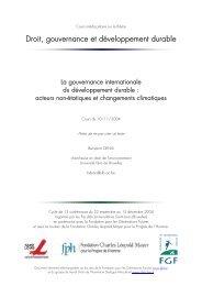 cours 2004 - La gouvernance internationale du ... - FGF