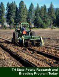 Download as pdf - Idaho Potato Commission