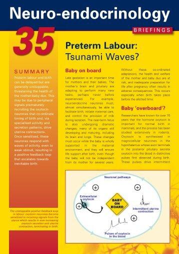 BSN/Briefing 24 - University of Edinburgh