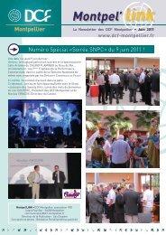 montpel'link juin 2011 - DCF