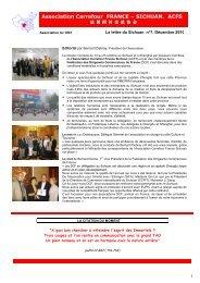 Newsletter Sichuan décembre 2010 - DCF