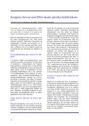 Kroppens forsvar mod DNA-skader påvirker kræftrisikoen (68,5KB)