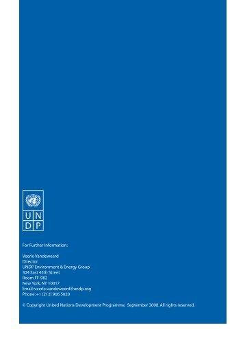 UNDP Scale