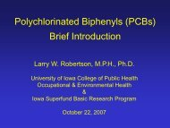 Polychlorinated Biphenyls (PCBs) Brief Introduction - The ...