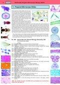 BIOLOGY - microscopia.info - Page 6