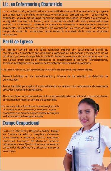 Lic. en Enfermería y Obstetricia Perfil de Egreso Campo Ocupacional
