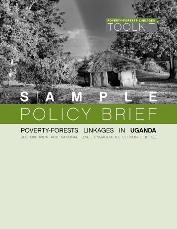 POLICY BRIEF - PROFOR