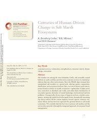 Centuries of Human-Driven Change in Salt Marsh ... - ResearchGate