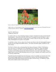 Unique Hummingbird Plants - Leon County Extension - University of ...