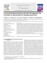 A novel photoelectrochemical cell with self-organized TiO2 ...
