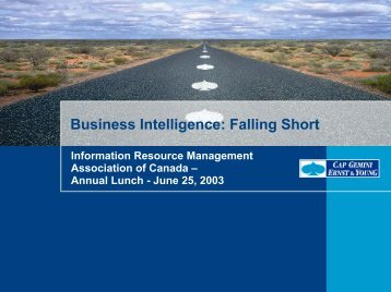 Business Intelligence: Falling Short - Information Resource ...