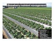 Strawberry nutrient management - Santa Cruz County