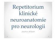 Repetitorium funkční neuroanatomie