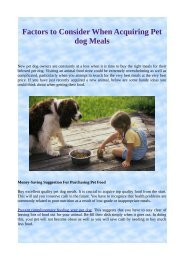 Factors to Consider When Acquiring Pet dog Meals