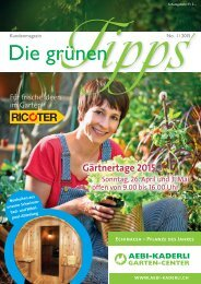 Die grünen Tipps / KDM 1