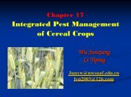 Integrated Pest Management of Cereal Crops