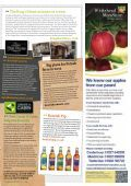 PINK-Newsletter-ISSUE-36_web - Page 3