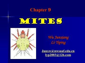Cereal crop mites