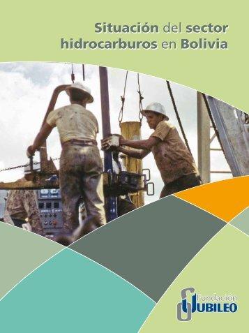 Situación del sector hidrocarburos en Bolivia