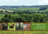 Woodland Strategy 11.34 Mb - the Dorset AONB
