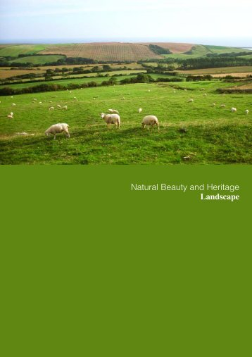 Natural Beauty and Heritage Landscape - the Dorset AONB