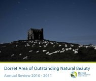 view on screen - the Dorset AONB