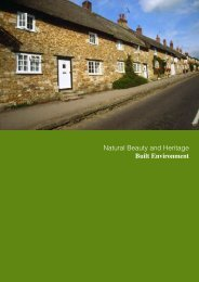 Natural Beauty and Heritage Built Environment - the Dorset AONB