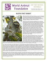 SLOTH FACT SHEET - World Animal Foundation