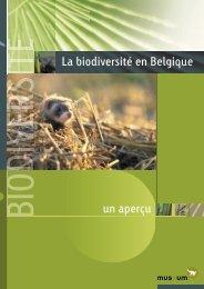 biodiversité en belgique