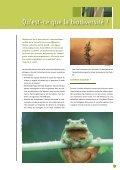 biodiversité en belgique - Page 3